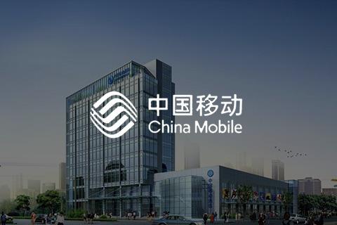 中国移动 - 生命周期流程管理系统