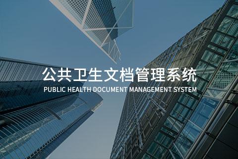 广东省某卫生系统部门-公共卫生文档管理系统