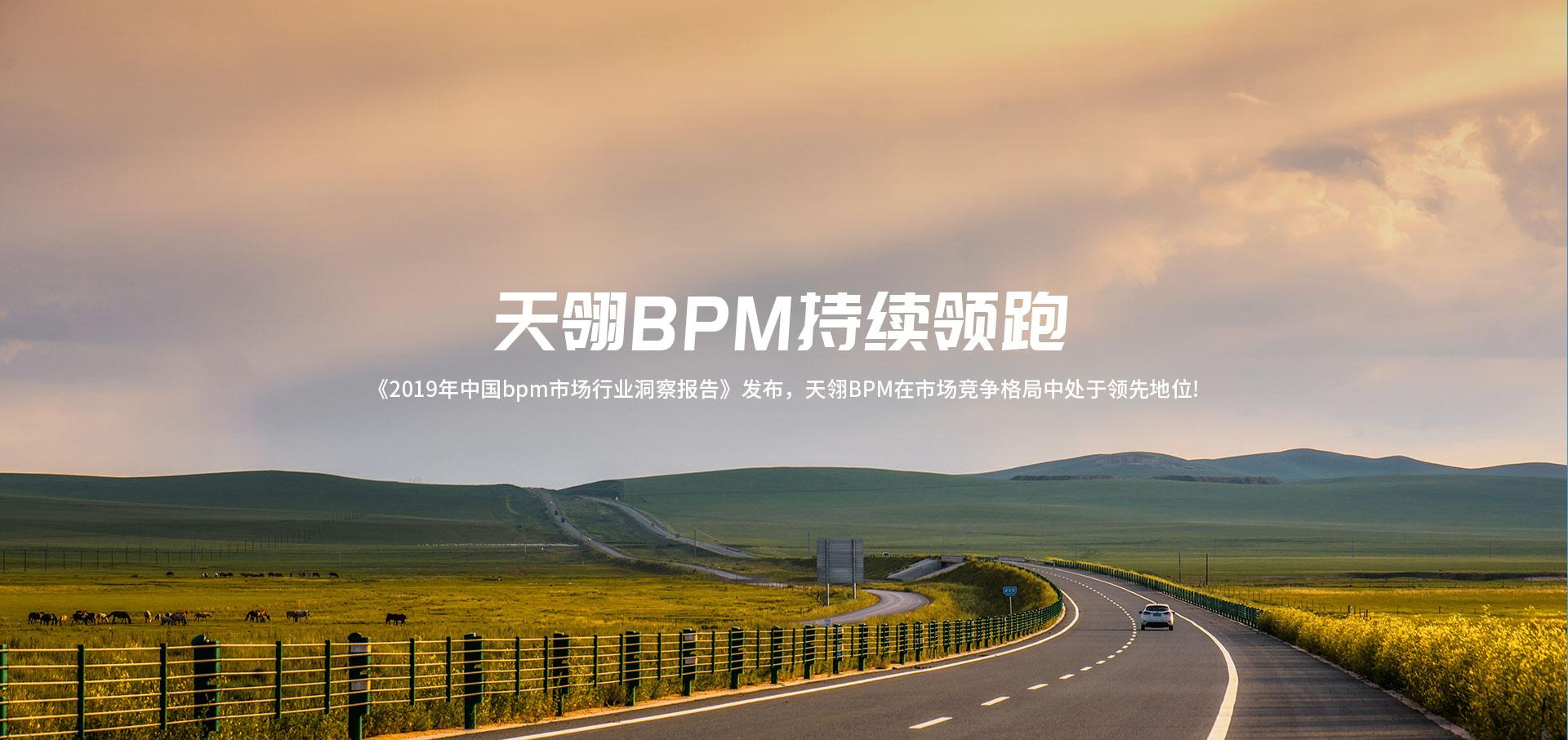 BPM行业报告